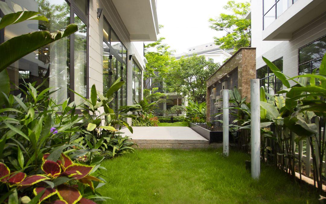 Tìm hiểu cách thiết kế sân vườn cho biệt thự